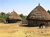Poblado rural
